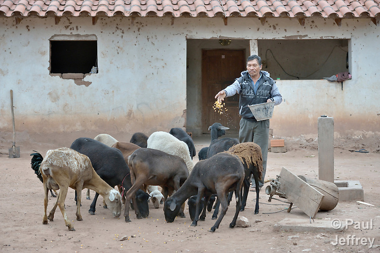 Gregorio Galarza, a Guarani indigenous man who lives in the village of Kapiguasuti, Bolivia, feeds his goat. He and his neighbors started small gardens with assistance from Church World Service, supplementing their corn-based diet with nutritious vegetables and fruits.