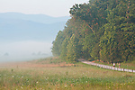 Cades Cove morning