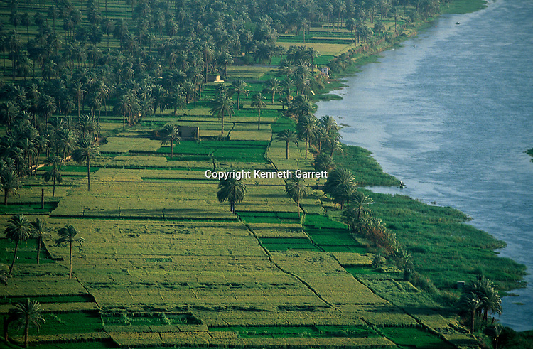 Nile River scenic, farming, the fertile area, near Amarna site, Egypt
