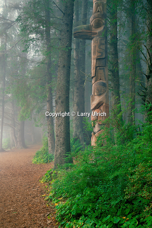 Totem poles in Sitka spruce forest<br /> Sitka National Historical Park<br /> Baranof Island<br /> Southeast Alaska