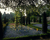 A series of 24 square flower beds with pathways lined with a sentinel yew tree and beds planted with tulips and forget-me-nots create a carpet of colour