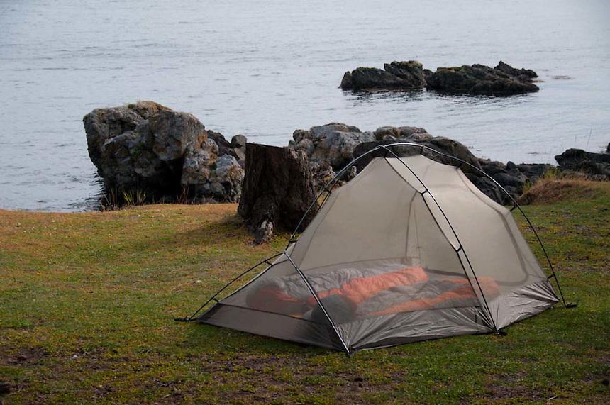 Tent at Cascadia Marine Trail Campsite, Jones Island, San Juan Islands, Washington, US