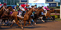 HALLANDALE BEACH, FL - JANUARY 27: Gun Runner #10, with Florent Geroux riding, wins the Pegasus World Cup Invitational Stakes Race on Pegasus World Cup Invitational Day at Gulfstream Park Race Track on January 27, 2018 in Hallandale Beach, Florida. (Photo by Liz Lamont/Eclipse Sportswire/Getty Images)