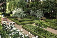 The shape of each variety of tree is given greater emphasis when planted against the strict topiary of the hedging