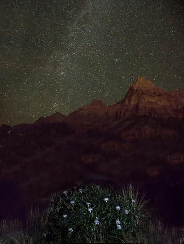 The Milky Way appears on a moonless night over  Zion National Park, Utah