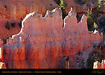 Fairyland Fin at Sunrise, Fairyland Canyon, Bryce Canyon National Park, Utah