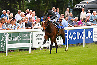 Winner of The Bathwick Car & Van Hire Novice Auction Stakes (Plus 10 )Urban Icon ridden by Tom Marquand and trained by Richard Hannon during Afternoon Racing at Salisbury Racecourse on 12th June 2018