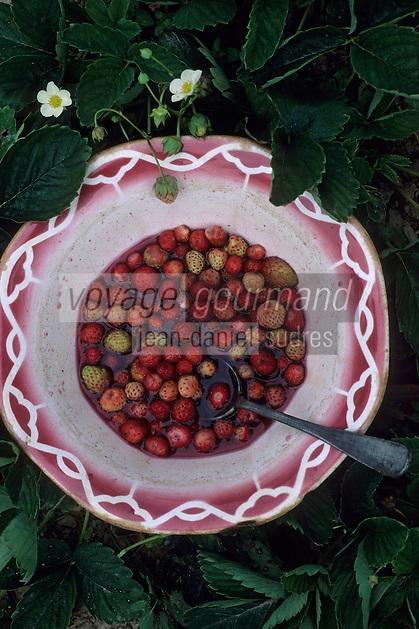 Europe/France/Midi-Pyrénées/12/Aveyron/Vallée de l'Aveyron/Belcatel : La soupe aux fraises de la ferme Cluzel