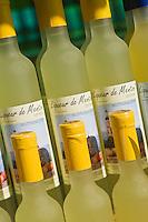 Europe/France/06/Alpes-Maritimes/Menton: Liqueur de Menton ( cousine du limoncello) de Lionel Deremarque, liquoriste - Les Apéritifs du Soleil