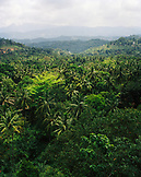 SRI LANKA, Asia, view of Matale valley