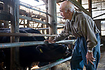 Minoru Oka, 85, tends to his recently acquired livestock at his home in Minamisoma, Fukushima Prefecture, Japan on Friday 05 August, 2011.  For Oka the nuclear crisis that began almost 5 months ago just down the road from his home  following the March 11 quake and tsunami is his second brush with the threat of radiation. .When the atomic bomb was dropped on Hiroshima on Aug. 6, 1945, Oka was a 19-year-old member of an Imperial Japanese Army unit located in Hiroshima..Photographer: Robert Gilhooly