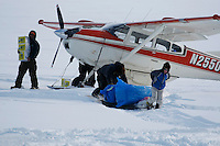 Volunteer checkpoint helpers haul musher supplies from Bruce Moroney's plane on the Yukon River at the Eagle Island checkpoint on Saturday afternoon.  Eagle Island is a remote tent checkpoint.  Iditarod 2009