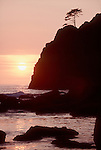 Olympic National Park, Shi Shi Beach, Point of the Arches, sea stacks, sunset, Washington State, Pacific Ocean, Point of Arches was originally purchased for preservation by The Nature Conservancy, ..