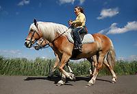 Paardrijden in Kinderdijk