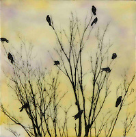 Crows in tree branch silhouette photo transfer over encaustic painting.