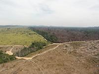 operação labareda - novo progresso/pa - agosto/2012 - desmatamento ilegal - Autor: Nelson Feitosa/Ibama