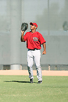 Wagner Mateo - Arizona Diamondbacks - 2010 Instructional League.Photo by:  Bill Mitchell/Four Seam Images..