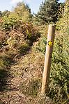 Public footpath sign through Suffolk Sandlings heathland, Sutton, Suffolk, England, UK