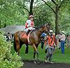 Havre de Grace before The Delaware Oaks (gr2) at Delaware Park on 7/10/10