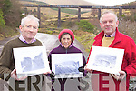 END OF THE LINE: Marking the 50th anniversary this week of the closure of the Farranfore to Valentia railway line at the Kells viaduct, l-r: Pat Kavanagh, Teresa Foley, John Golden.
