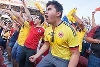 Santa Clara, CA - Friday June 3, 2016: Colombia fans celebrate their team's second goal. USA played Colombia in the opening match of the Copa América Centenario game at Levi's Stadium.