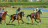 Evensup winning at Delaware Park on 9/24/12