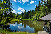 Oesterreich, Tirol, Reith bei Kitzbuehel, oberhalb von Going: kleiner Rastplatz mit Seerosen-Weiher auf dem Weg zur Hollenauer-Kreuz Jausenstation | Austria, Tyrol, Reith near Kitzbuhel, above Going: pond with  water lilies
