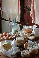 Europe/France/Normandie/14/Calvados: Lait, beurre, oeufs , fromages de Normandie: Camembert, Livarot, Pont l'Evèque dans une laiterie