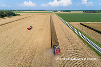 63801-12313 Harvesting corn in fall-aerial  Marion Co. IL