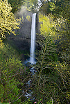 Latourell Falls, Columbia River Gorge, Oregon