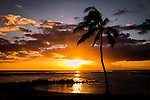 sunset on tropical beach with palm tree