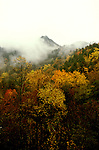 TN: Great Smoky Mountains Park, Newfound Gap, Fall color, tnsmok102    Photo copyright Lee Foster, www.fostertravel.com, 510/549-2202, lee@fostertravel.com