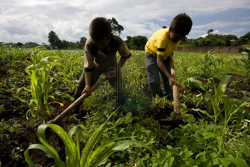Children on a summer break from school work on their uncle's farm near Chimaltenango, Guatemala.