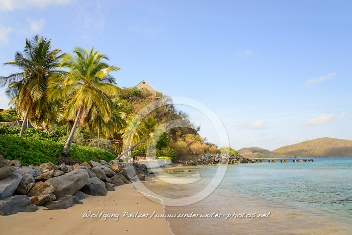 Mango Bay mit Palmen und Sandstrand, Mango bay with Palms and sandy beach, Insel Virgin Gorda, Britische Jungferninsel, Karibik, Karibisches Meer, Virgin Gorda Island, British Virgin Islands, BVI, Caribbean Sea