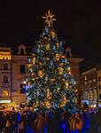 Kraków, 13-18.12.2019. Iluminacja bożonarodzeniowa na Starym Mieście w Krakowie. Choinka na Krakowskim Rynku.