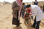 MAFRAQ District Jordan, March 4rd, 2014 :  A Mobile polio vaccination team visit a bedouin camp in Mafraq Governorate, Jordan, during the polio mass immunization in five high-risk countries bordering Syria. Mafraq Governorate covers one fifth of Jordan and border Syria, Iraq and Saudi Arabia. It has a population of 306,000 jordanians plus 400,000 syrian refugees. A total of 56,000 children under five are being immunized during the campaign  (Photo by Jean-Marc Giboux)