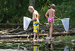 A young boy checks the contents of his net as a girl searches for frogs and other creatures along a beach littered with fallen trees.
