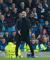 Manchester City Manager (Head Coach) Josep Guardiola during the UEFA Champions League GROUP match between Manchester City and Celtic at the Etihad Stadium, Manchester, England on 6 December 2016. Photo by Andy Rowland.
