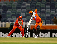 1st November 2019; Western Australia Cricket Association Ground, Perth, Western Australia, Australia; Womens Big Bash League Cricket, Perth Scorchers versus Melbourne Renegades; Amy Jones of the Perth Scorchers plays through the covers during her innings