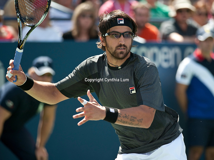 Sept.4, 2010.Janko Tipsaravic, in action during his third round loss to Gael Monfils of France, at the US Open, Flushing Meadow, NY