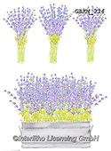 Kate, FLOWERS, BLUMEN, FLORES, paintings+++++Lavender bunches,GBKM334,#f#, EVERYDAY,lavender