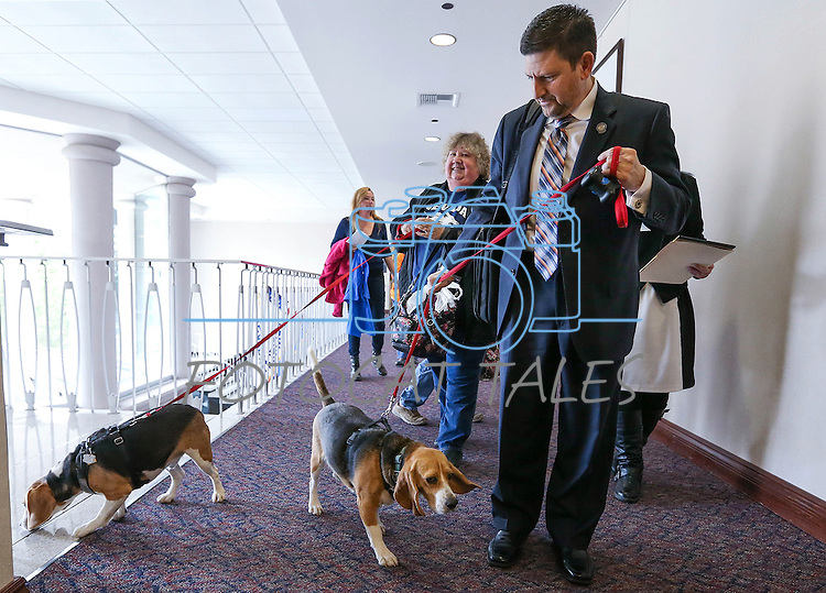 Nevada Sen. Mark Manendo, D-Las Vegas, enters the Legislative Building in Carson City, Nev., on Tuesday, March 24, 2015 with rescue beagles Dean and Luke. Manendo introduced a bill Tuesday that would require labratories that conduct research on dogs and cats to put the animals up for adoption after the study work.  <br /> Photo by Cathleen Allison