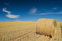 bale<br /> near Wood Mountain<br /> Saskatchewan<br /> Canada