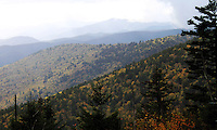 Stock photo: View of the great smoky mountains hills and pine trees in fall from the Clingmans dome foothills.