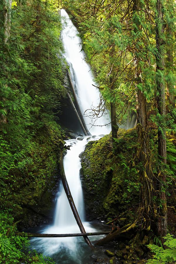 Murhut Falls, Jefferson County, Washington, USA
