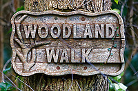 A wooden Woodland Walk sign in Aberporth
