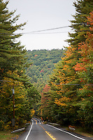 Fall leaves hang on trees above State Highway 202 outside of Shutesbury, Massachusetts, USA.