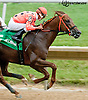 I'm Steppin' It Up 1st time by in The Stymie Stakes at Delaware Park on 7/11/13