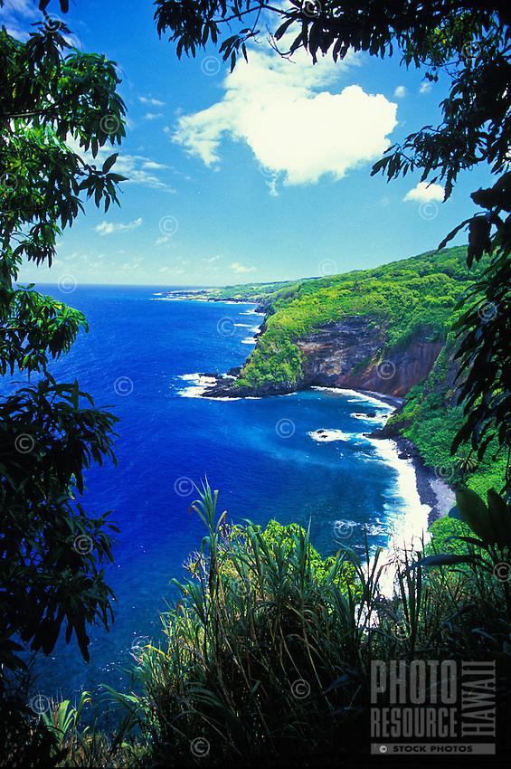 The scenic coastline of east Maui on the road to Hana.