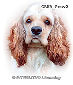 Howard, REALISTIC ANIMALS, REALISTISCHE TIERE, ANIMALES REALISTICOS, paintings+++++,GBHRPROV2,#A# ,puzzles